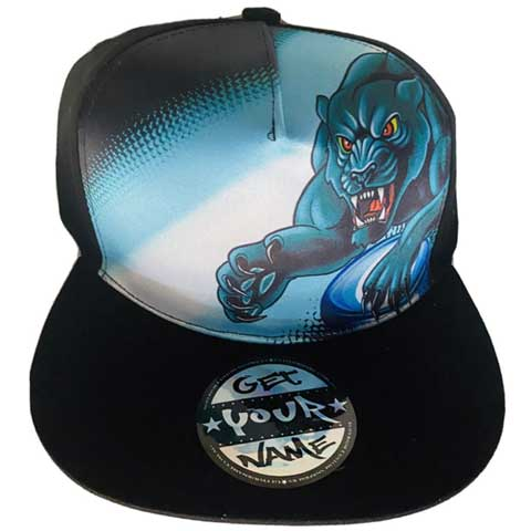 hat-panthers-football